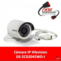 Cámara IP Hikvision DS-2CD2042WD-I